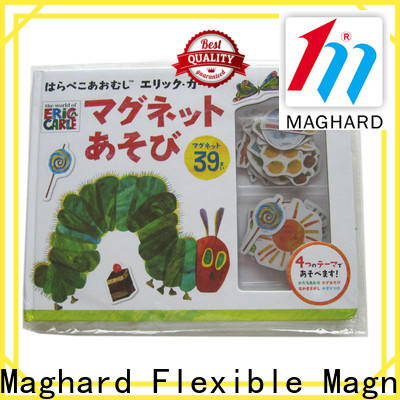 industrial magnets & magnetic toy sets