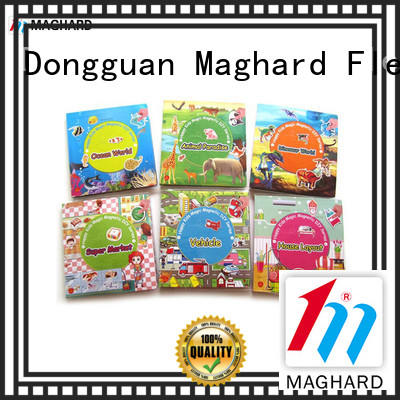 Maghard appealing Magnetic Toy Sets for kids for craft